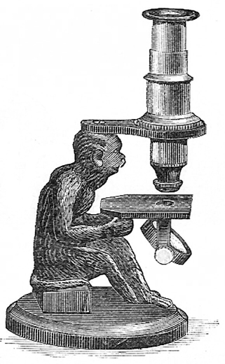 "Moreau: ""Monkey Microscope""; Abb. aus: Journal of the Royal Microscopical Society 1889: 113"